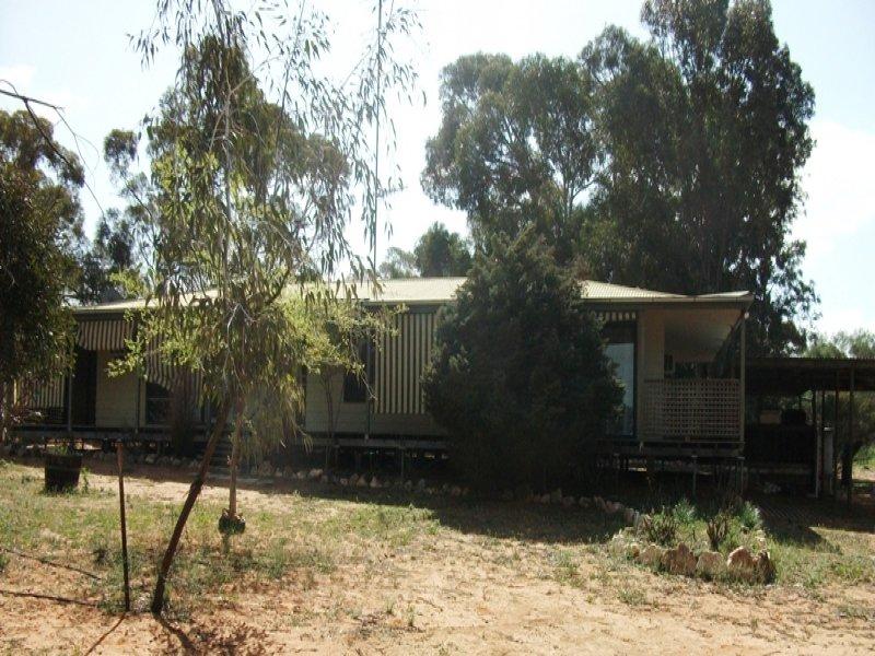 503 Caddy Road, Loveday, SA 5345