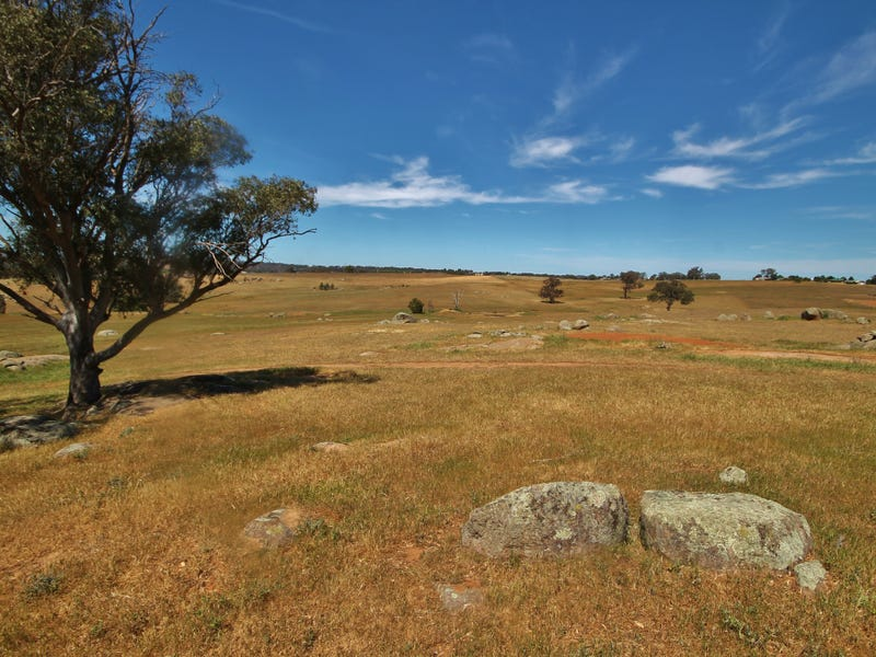 495 Spring Creek Road, Young, NSW 2594