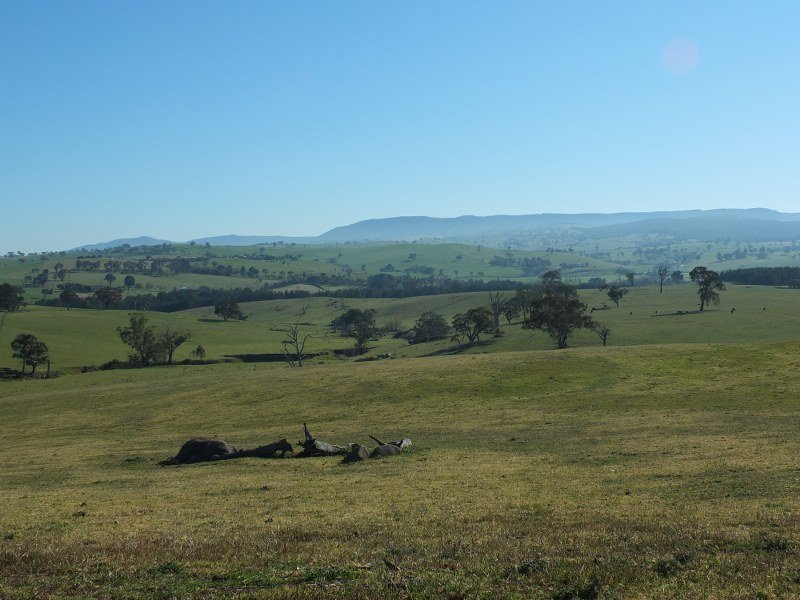 Lot 6 O''Connell Plains Road, O'Connell, NSW 2795