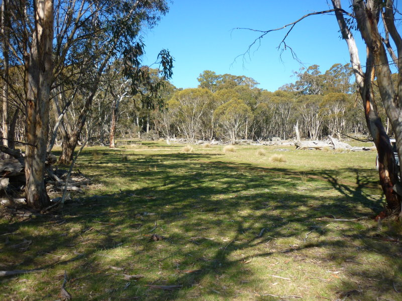 Lot 32, Slap-Up Road, Jerangle, NSW 2630