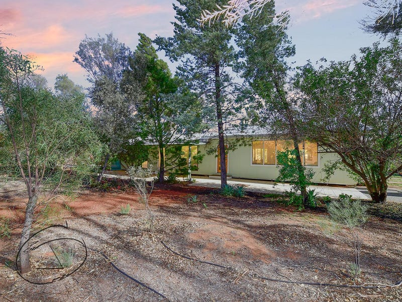 53 Lillecrapp Road, Ilparpa, NT 0873