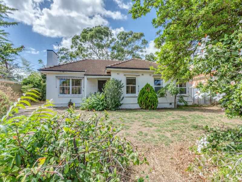 20 Pine Avenue, Novar Gardens, SA 5040