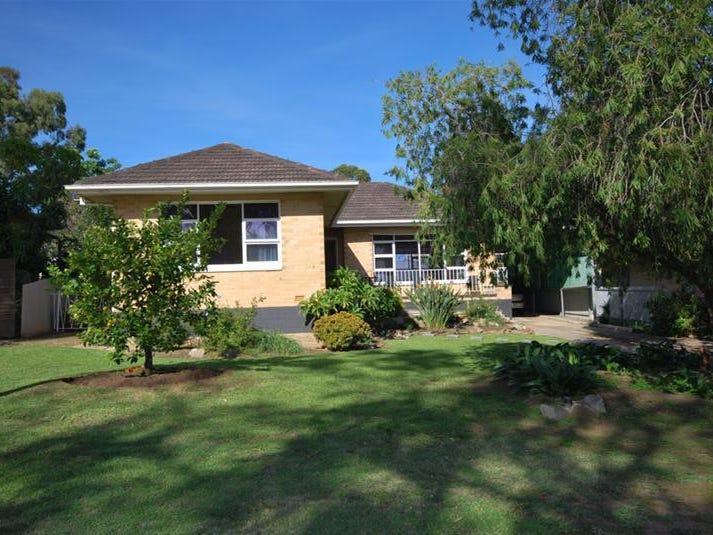 19 MacMahon Avenue, St Agnes, SA 5097