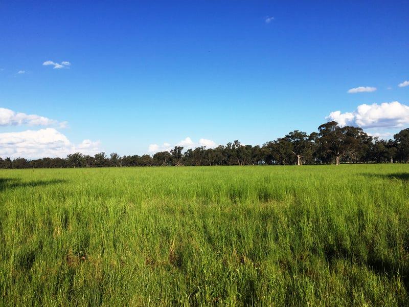 393 Boxfield Road, Gooloogong, NSW 2805