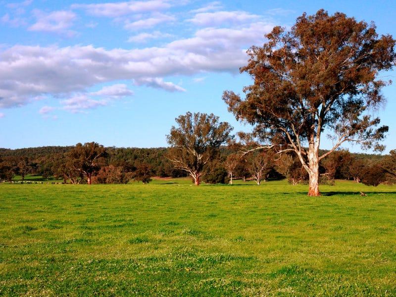 2242 Nangar Road, Canowindra, NSW 2804