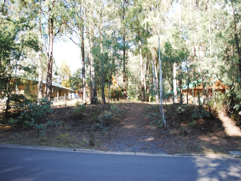 45 Warrambat Road, Sawmill Settlement, Vic 3723