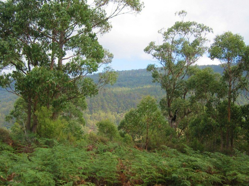 Lot 2 Off Pelverata Road, Pelverata, Tas 7150