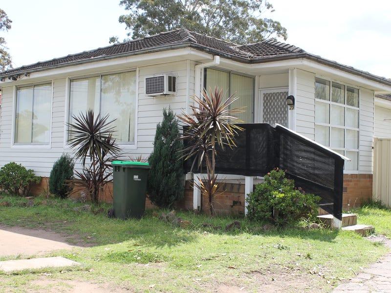 25 Corriedale Street, Miller, NSW 2168