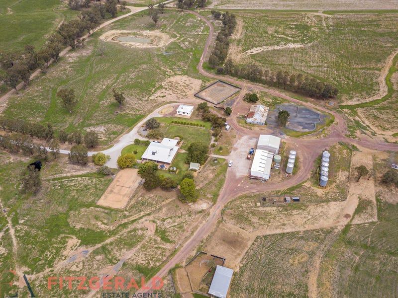 Norah Creek Road, Molong, NSW 2866