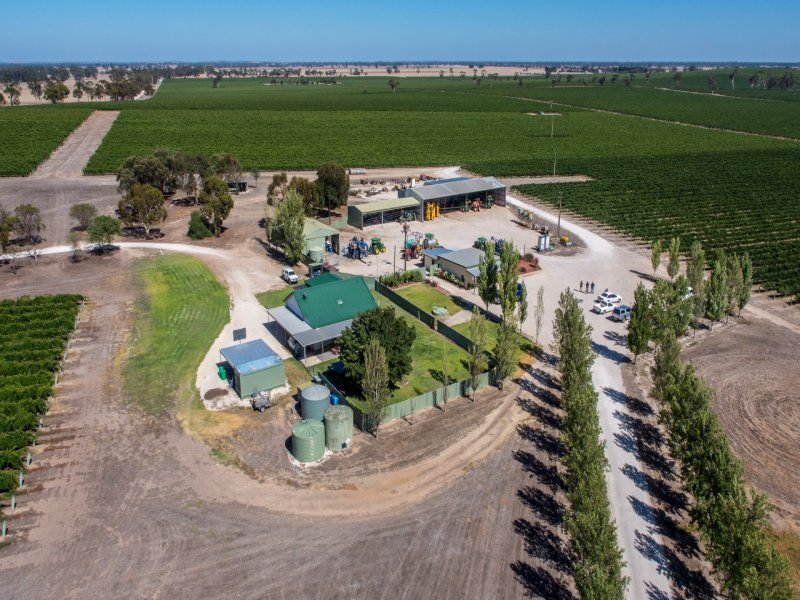 Howcroft 1 & 2 Vineyards, Mundulla, SA 5270
