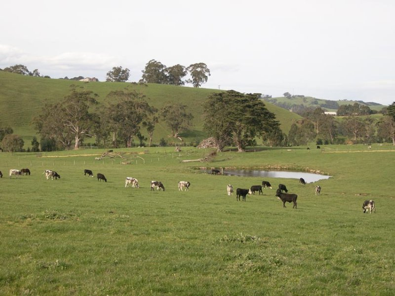 . South Gippsland Highway, Kardella South, Vic 3951