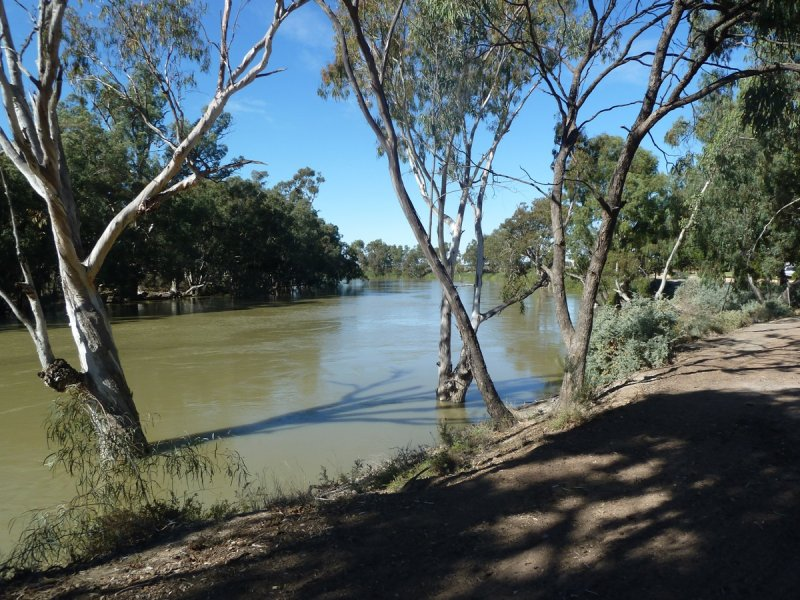 Lot 1, Florence Point Rd,, Wentworth, NSW 2648