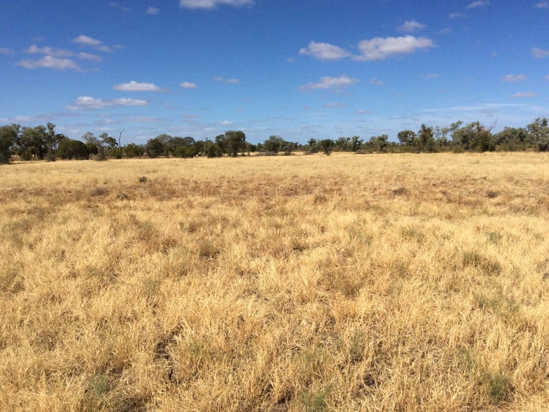 Holmleigh, Prairie Muttaburra Road, Prairie, Qld 4816