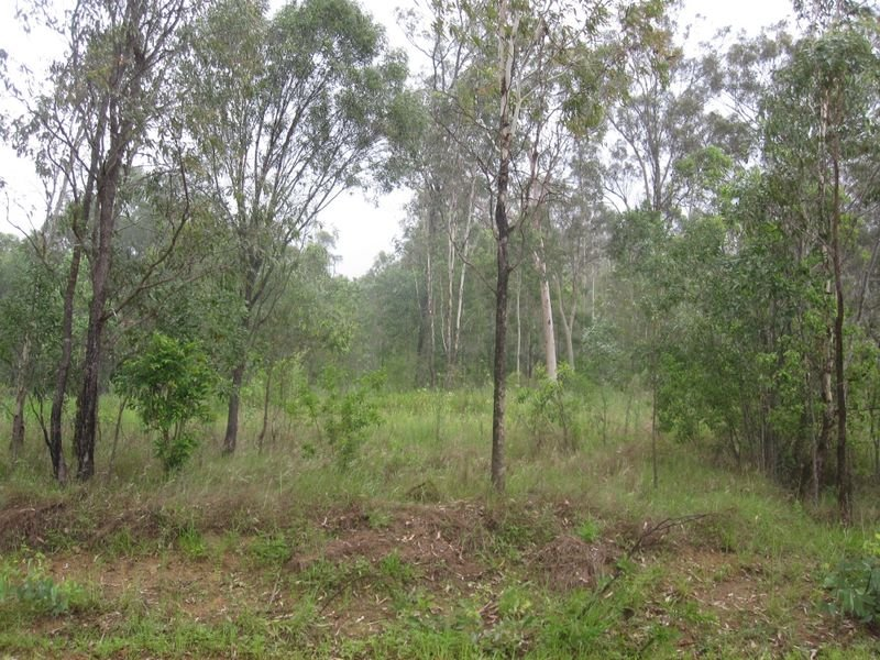 Lot 14 Gaeta Road, Gaeta, Qld 4671