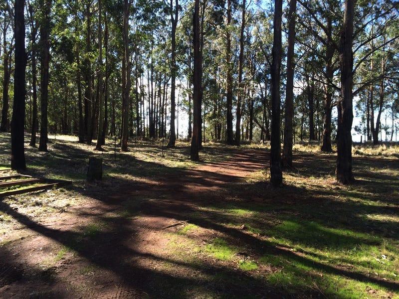 70 Braidwood Road, Sassafras, NSW 2622