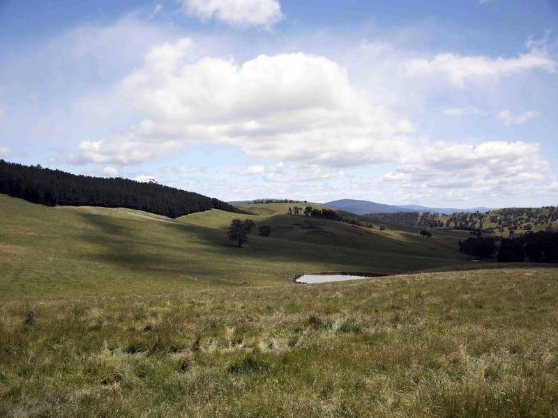 390 Kangaroo Track, Omeo, Vic 3898