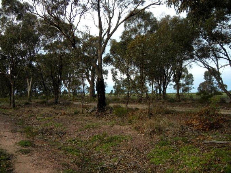 'Harrimans Point', Waranga Shores, Vic 3612