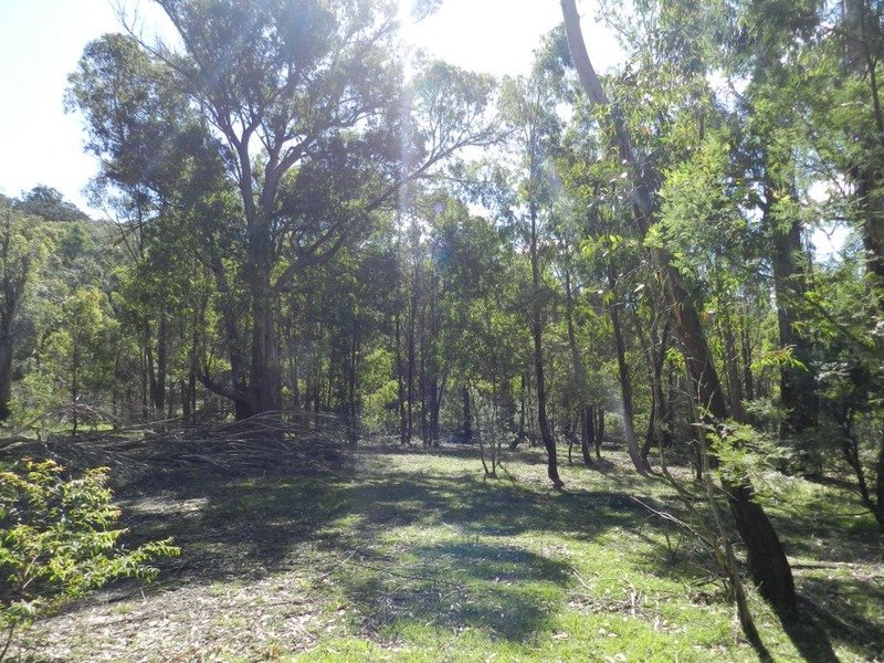 Lot 108 Off Tarlo River Road, Greenwich Park, NSW 2580