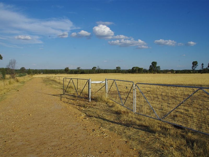 155 Gun Club Road, Narrabri, NSW 2390