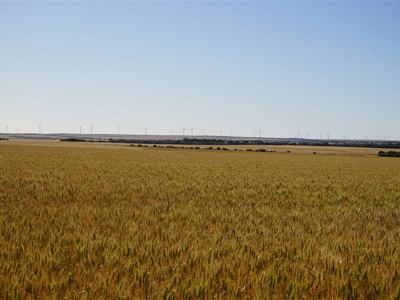 Lot 25215 Tandegin East Road, Muntadgin, WA 6420