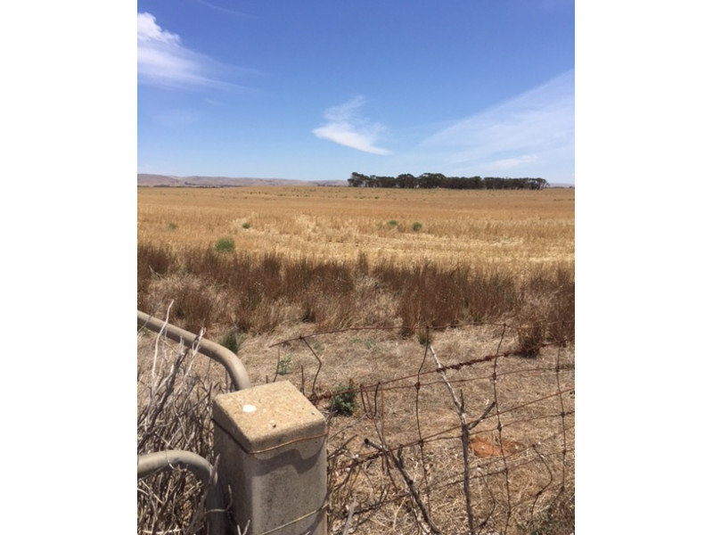 Address available on request, Angas Valley, SA 5238