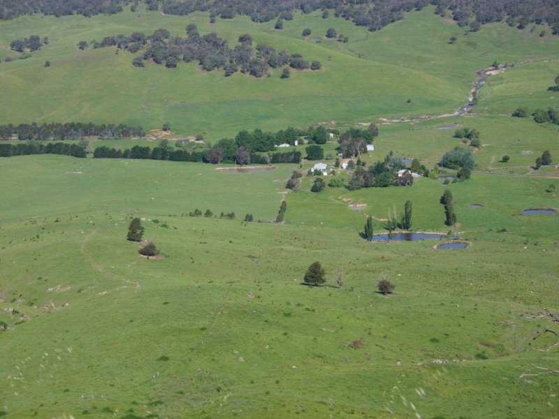 Yaven Creek Road, Adelong, NSW 2729