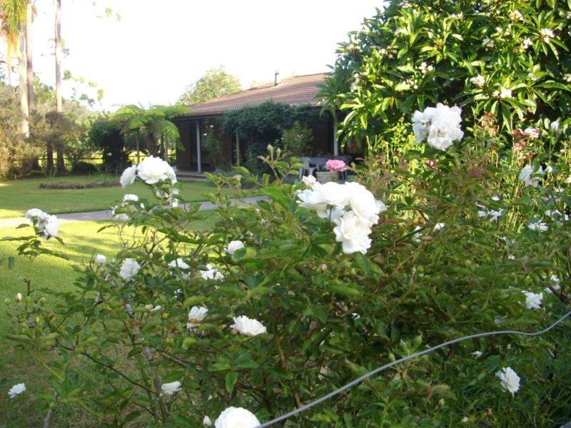 339 Dairyville Road, Upper Orara, NSW 2450