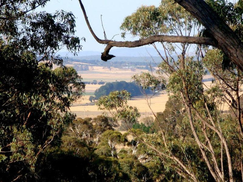 Widgiewa Road, Carwoola, NSW 2620