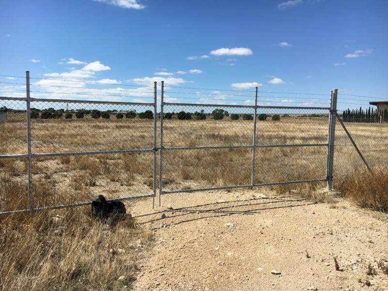 Lot 60 Big Olive Grove, Tailem Bend, SA 5260