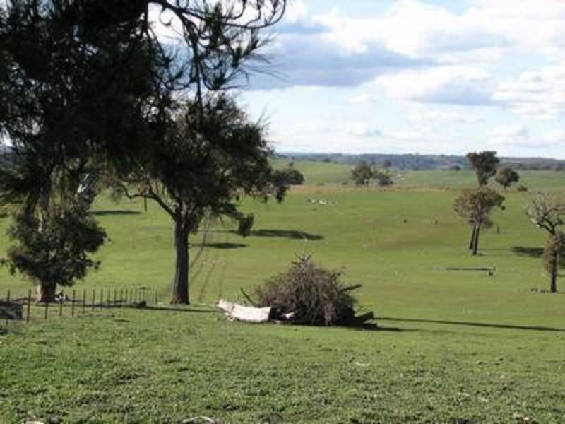 Lot 53 Turkey Hill Road, Fullerton, NSW 2583