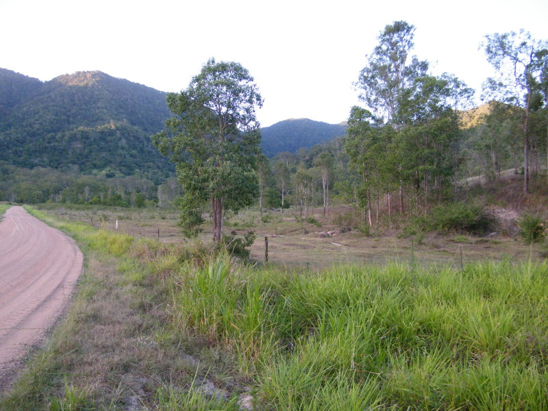 Lot 1 Pittionis Road, Netherdale, Qld 4756