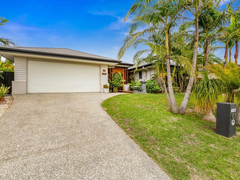 61 Old Lismore Road, Murwillumbah, NSW 2484