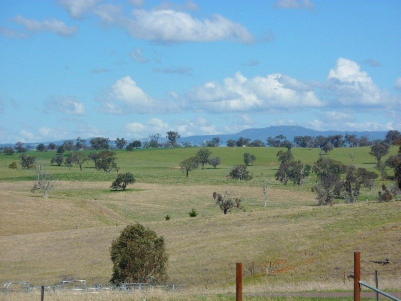 1321 Peabody Road, Molong, NSW 2866