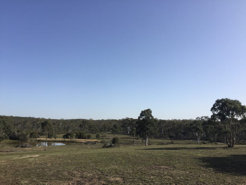 86 Paddy's Close, Lower Boro, NSW 2580
