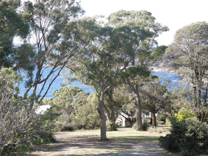 5 Felmingham Street, Binalong Bay, Tas 7216