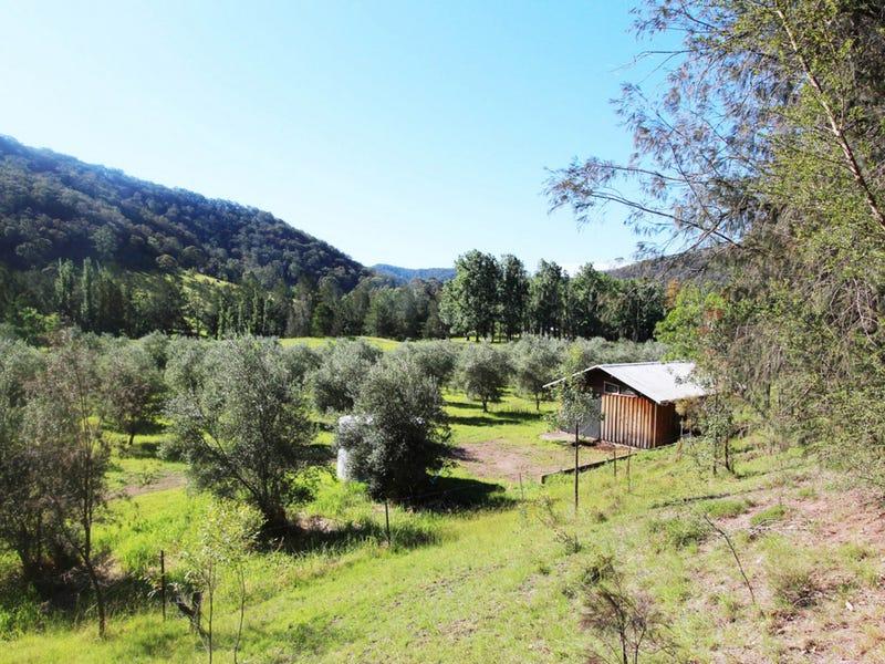 1855 Wollombi Road, Sweetmans Creek, NSW 2325