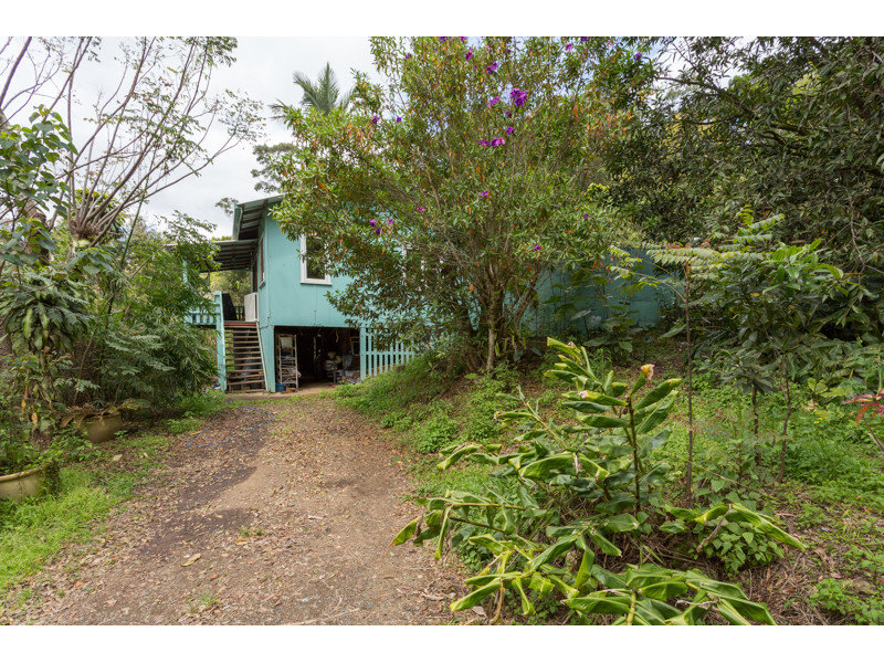 266 Rose Road, Tuntable Creek, NSW 2480