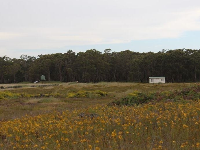 000 Harmans Road, Mount Napier, Vic 3301
