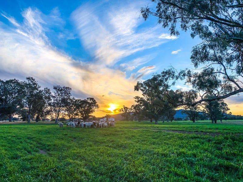 315 Taylors Lane, Quirindi, NSW 2343