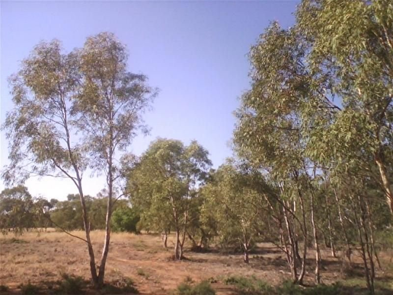 Lot 104 National Highway, Merriton, SA 5523
