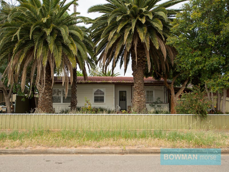 24 Scott Avenue, Clovelly Park, SA 5042