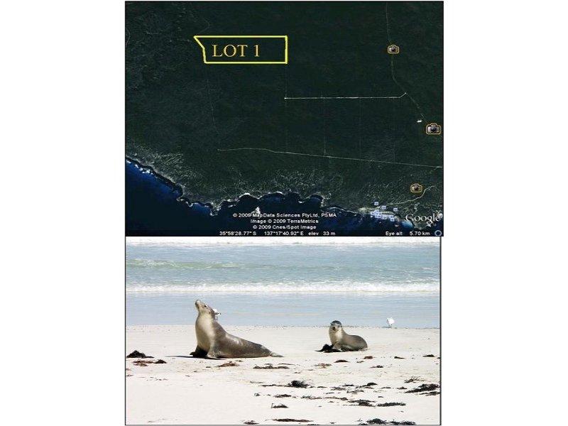 1 Graham Rd, Seal Bay, SA 5223