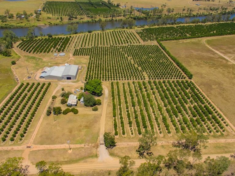 196 Mt Lawless Road, Gayndah, Qld 4625