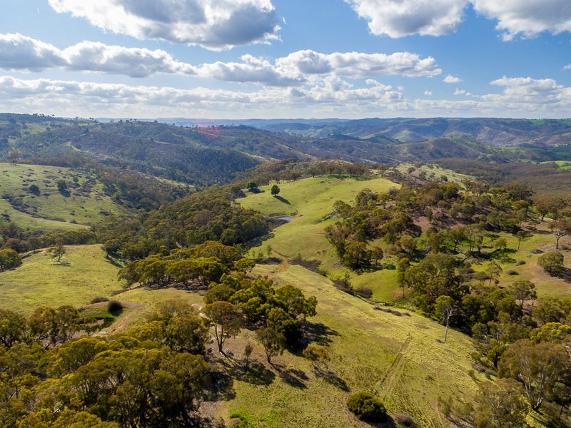 891 Red Hill Road, Paling Yards, NSW 2795