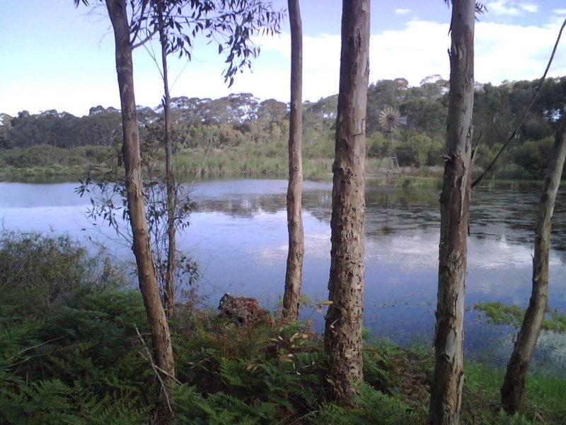 55 Bevan  Road, Hope Forest, SA 5172