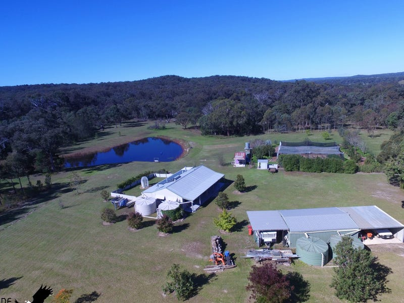 276 Mckechnie Road, Ruby Creek Via, Liston, NSW 2372