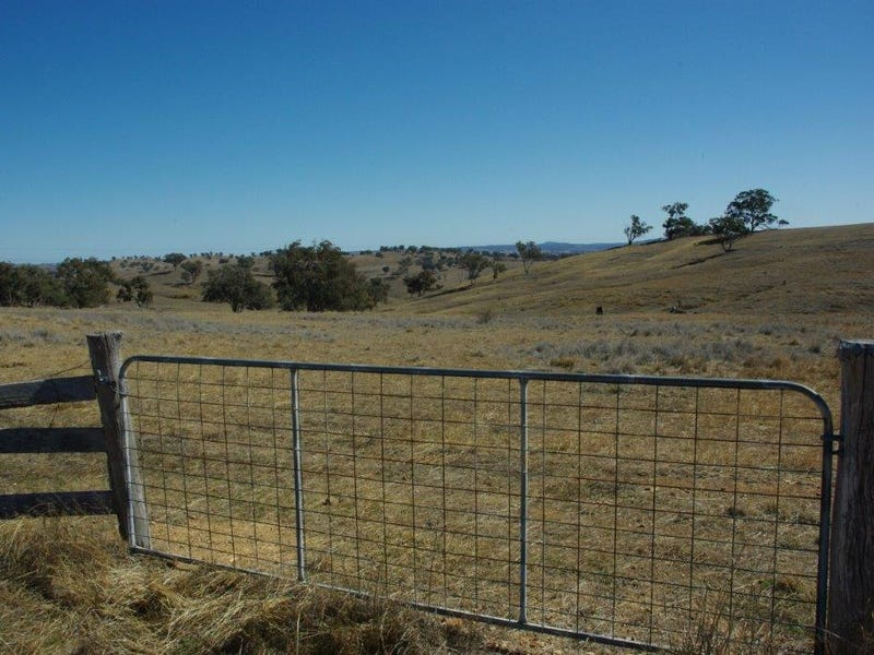 178 Tarrawingee Road, Mumbil, NSW 2820