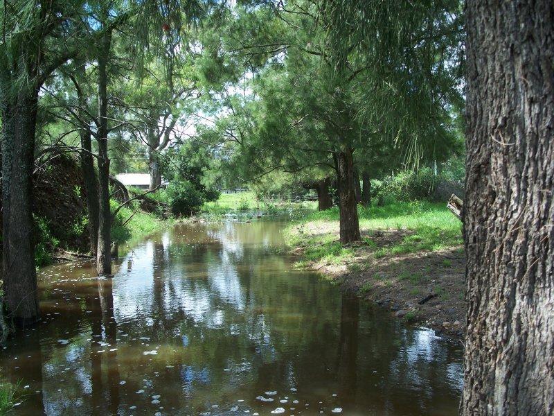 """Lot 1 """"Sergeants Retreat"""" Ashbrooke Road, Wingen, NSW 2337"""