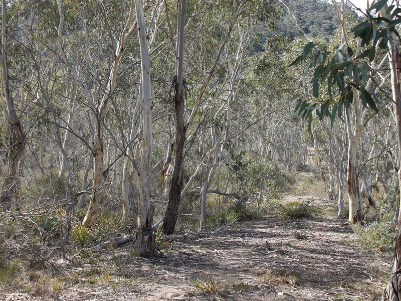 398 Wyanbene Road, WYANBENE, Braidwood, NSW 2622