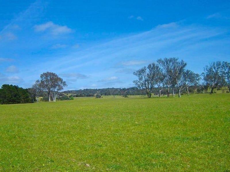 Lot 106 Back Creek Road, Gundaroo, NSW 2620